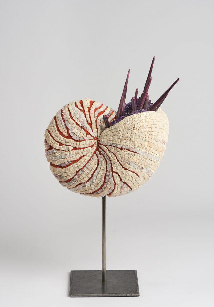 JoVe - Mosaïques - Nautilus