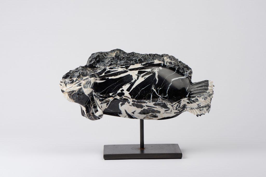 JoVe - Sculptures - Fossile